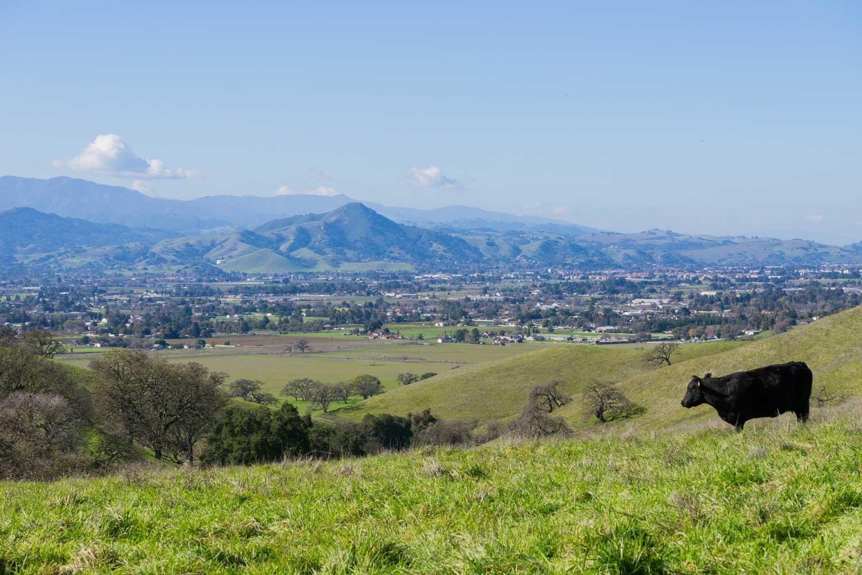 View towards Morgan Hill from Coyote Lake - Harvey Bear Park, California — Photo by SundryPhotography